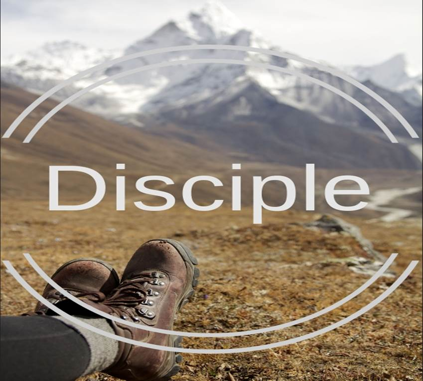 Disciple banner