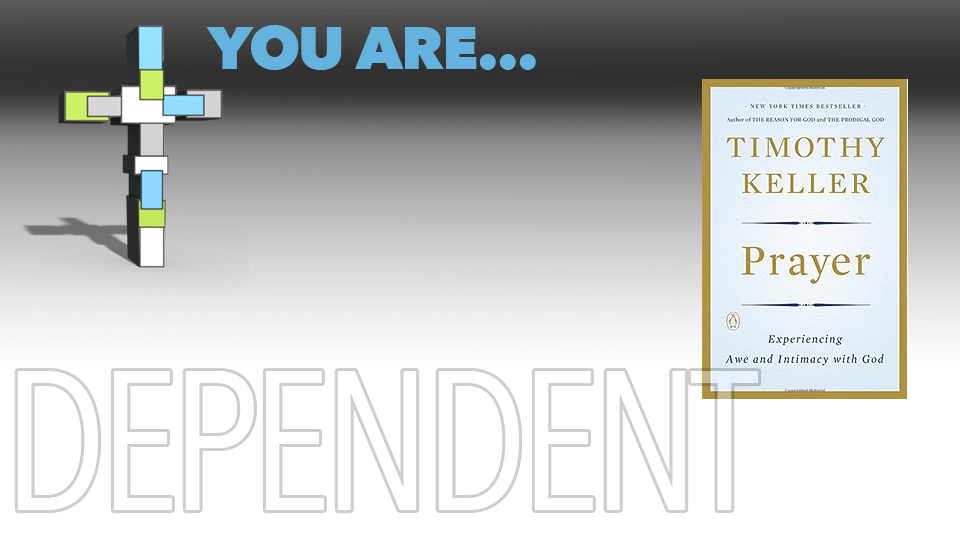YouAre_DependentBook