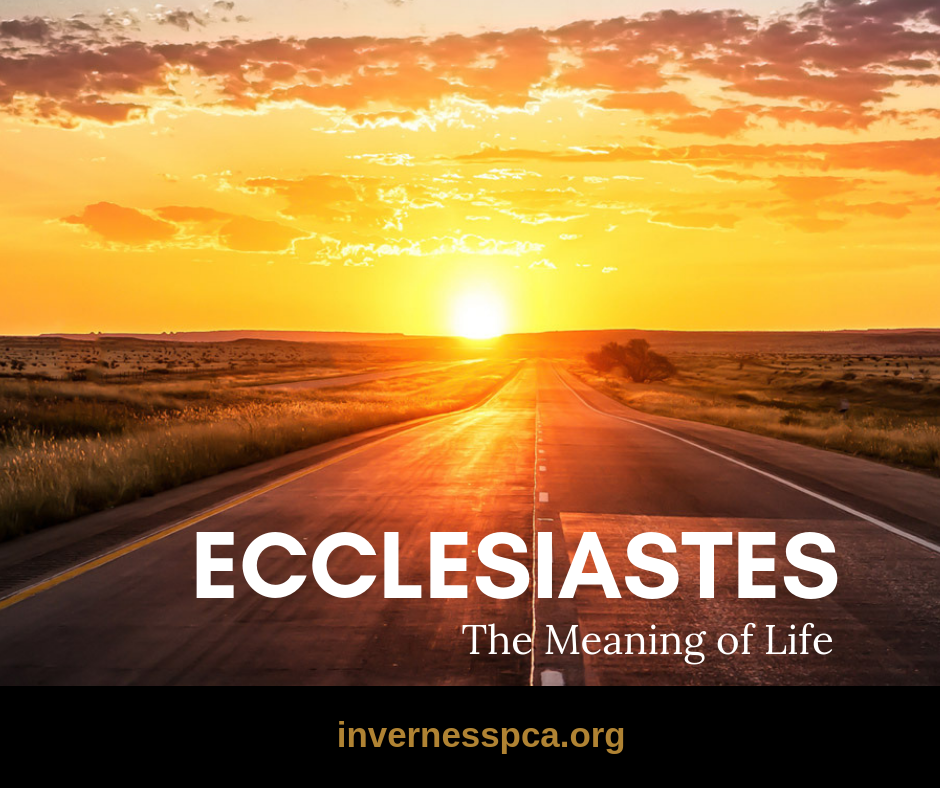 Morning Promo Ecclesiastes Series