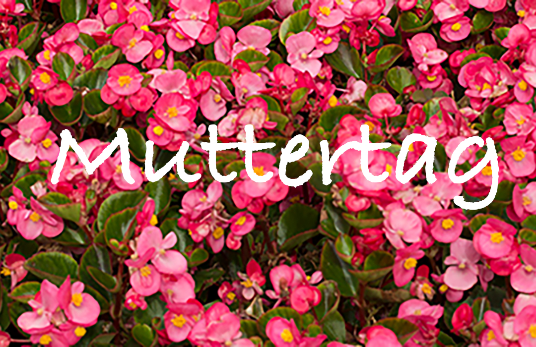 Muttertag150510Featured
