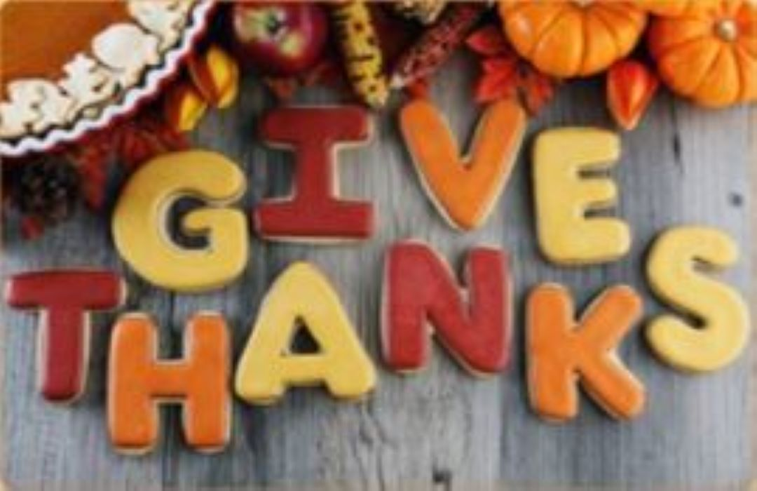 Thanksgiving Food Drive.JPG image