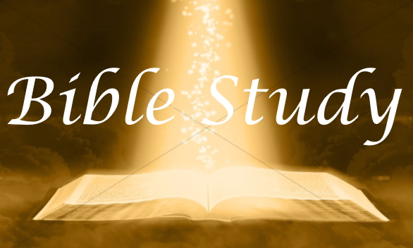 See all of our Bible Studies