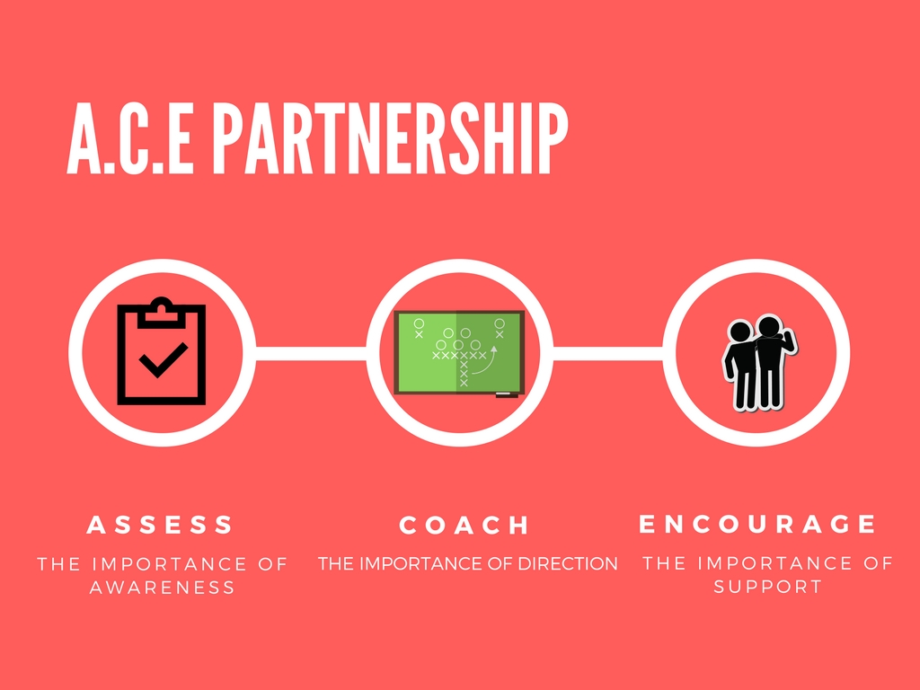 ACE Partnership Pic
