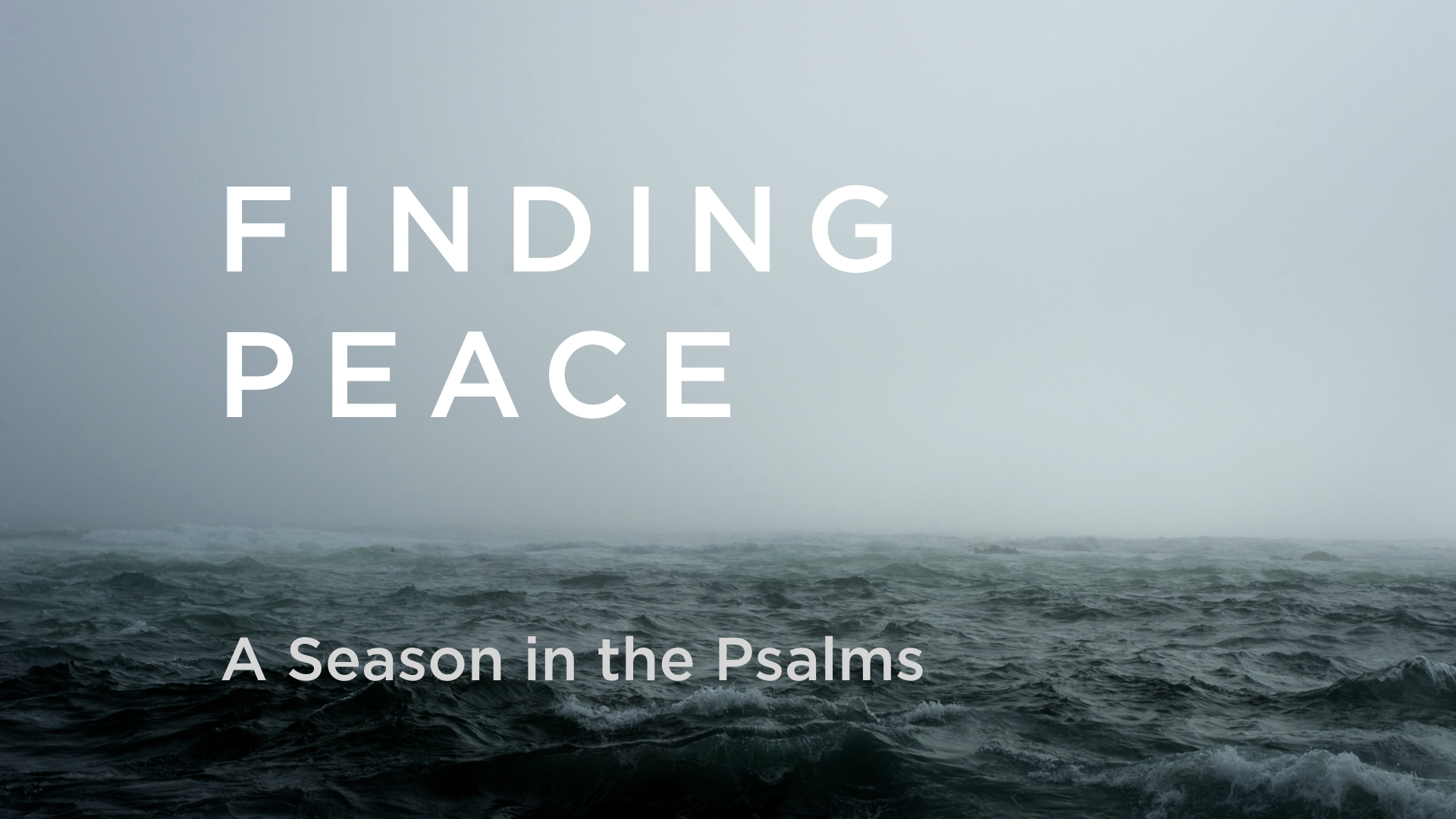 Finding Peace: A Season in the Psalms
