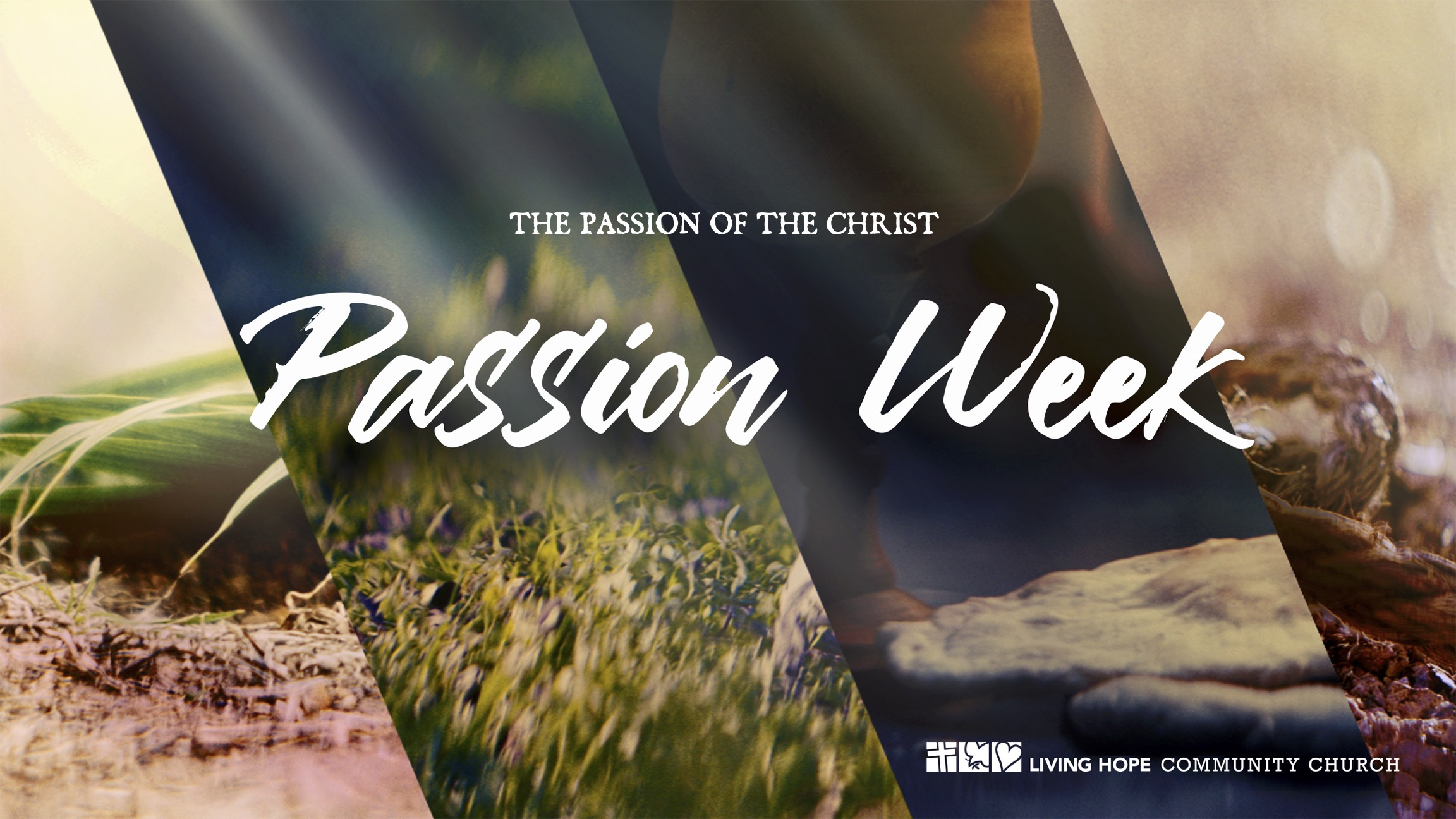 passion week_16x9
