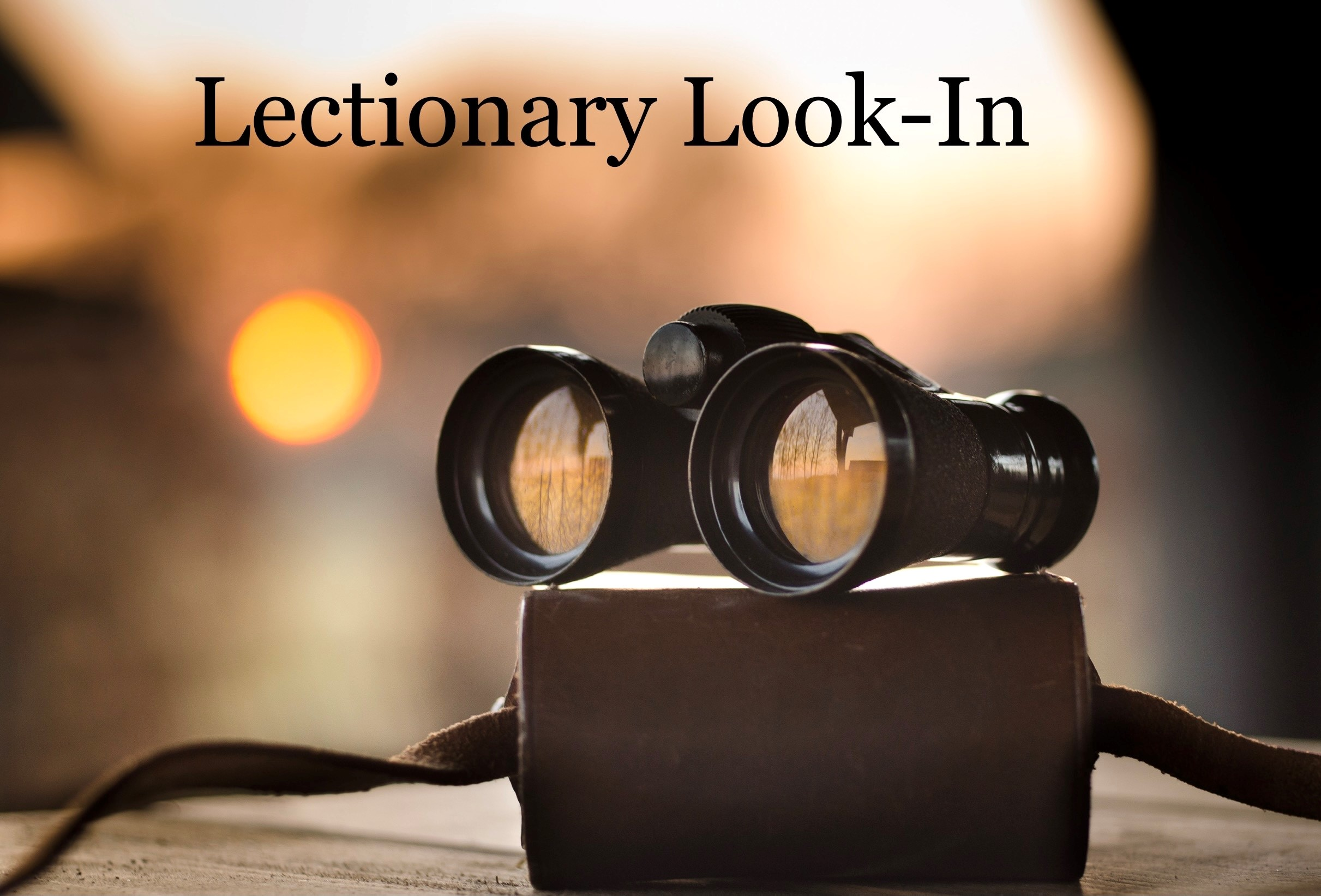 Lectionary Look-In