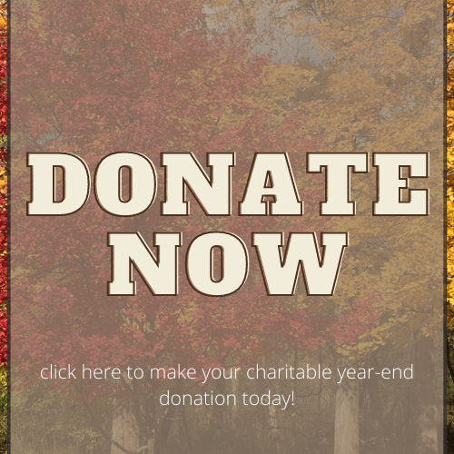 website_year end Donate Now