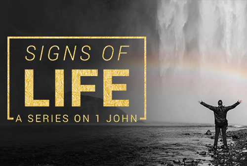 Signs of Life: A Series On 1 John