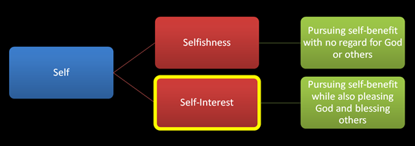 Selfishness versus Self-interest