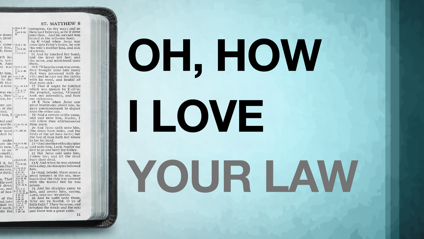 How I Love Your Law