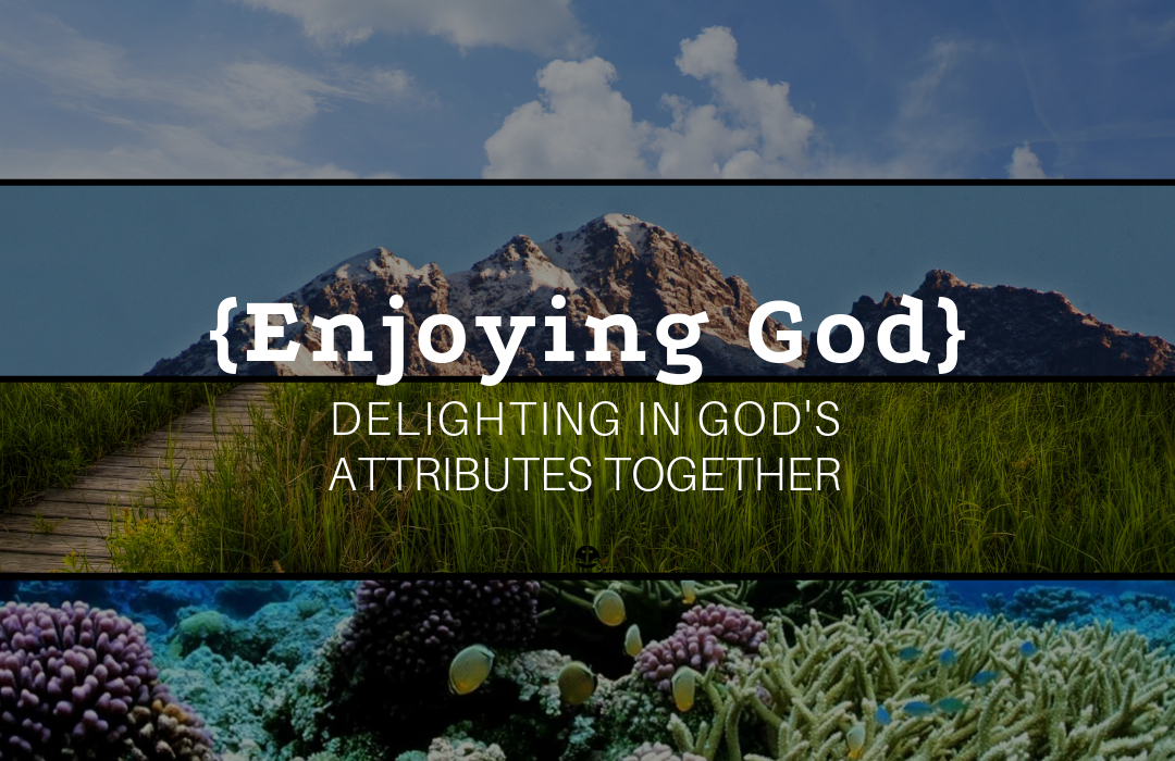 Copy of Enjoying God Banner