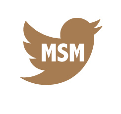 twitter button-MSM