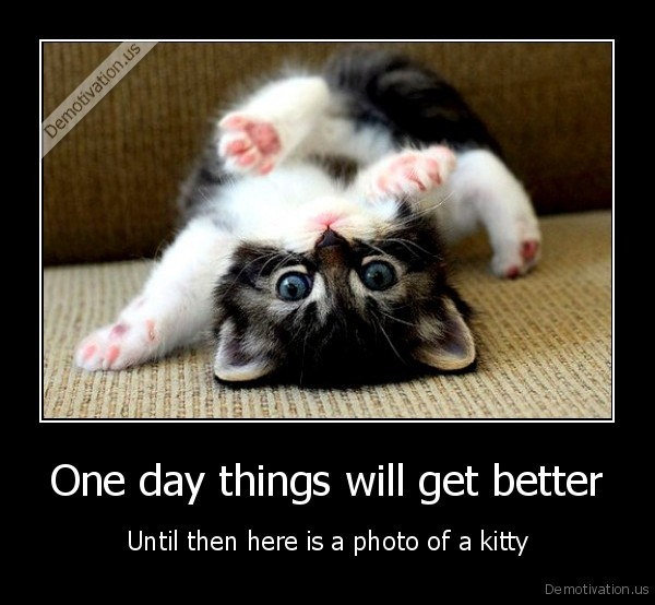 demotivation.us_One-day-things-will-get-better-Until-then-here-is-a-photo-of-a-kitty_139219272482