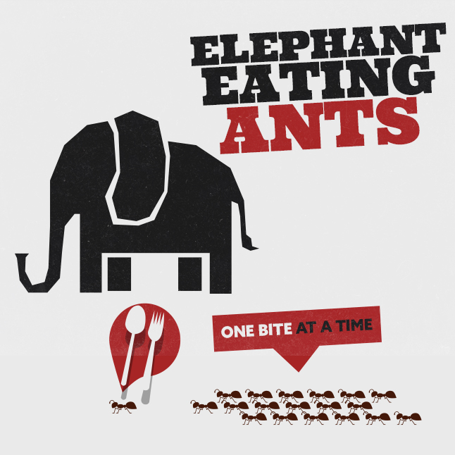 Elephant Eating Ants banner