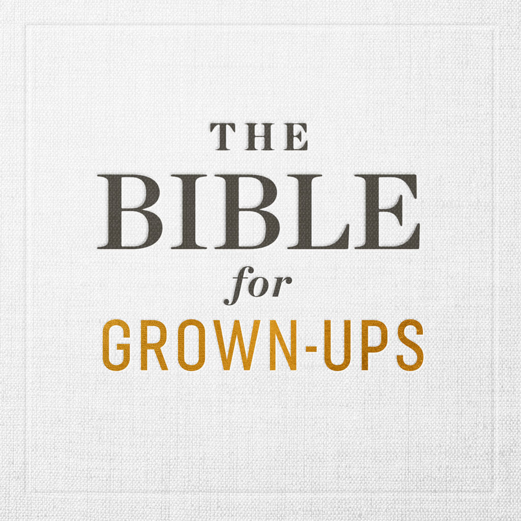The Bible for Grown Ups banner