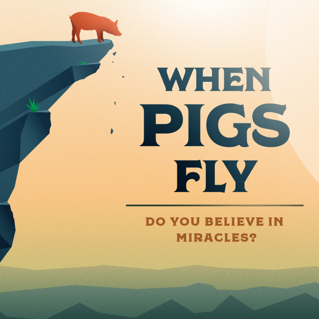 When Pigs Fly banner