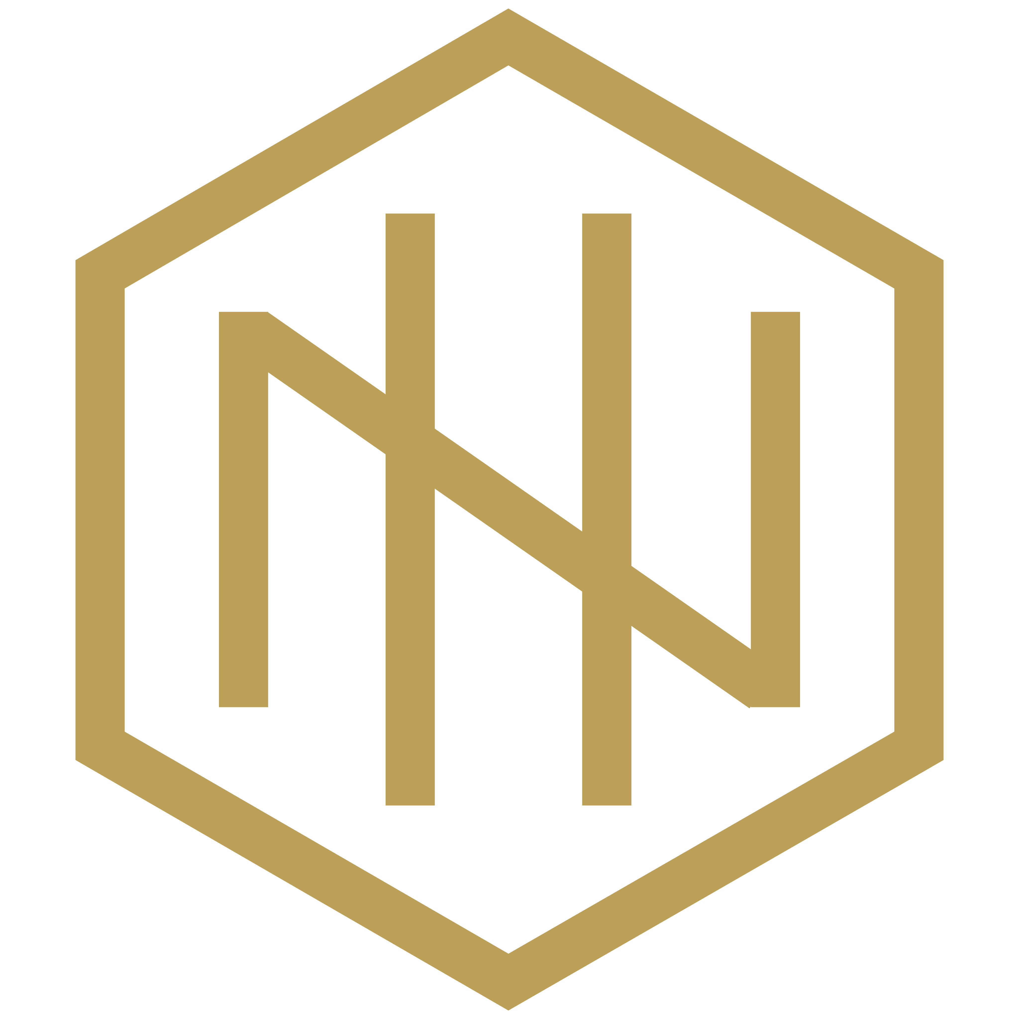 NH Logo-Gold