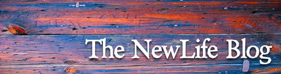 The NewLife Blog banner