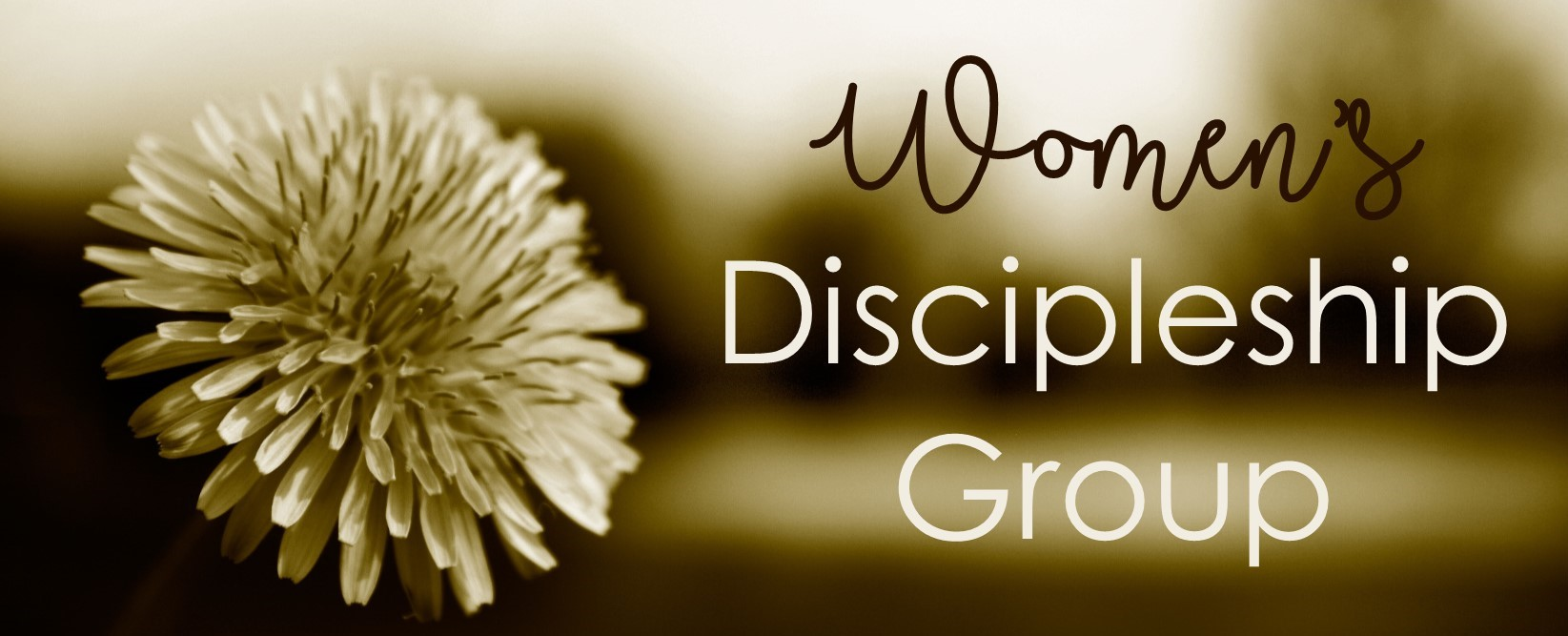 Women's Discipleship Group image