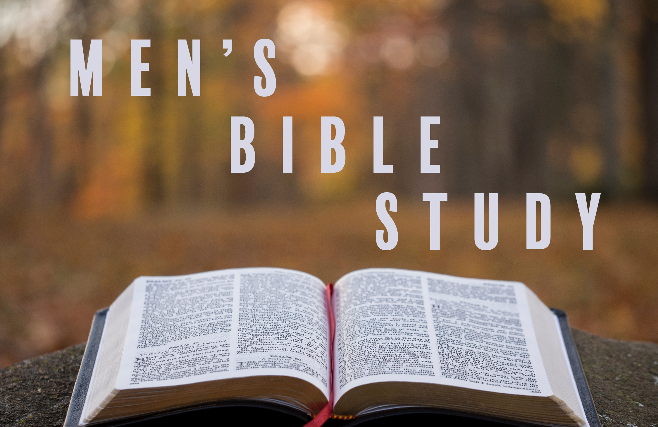 Men's Bible Study Rectangle2-01 image