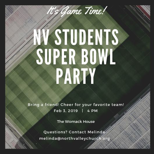 Super Bowl Party image