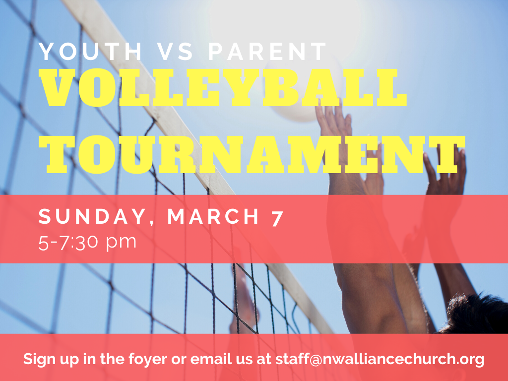 youth parent volleyball  image