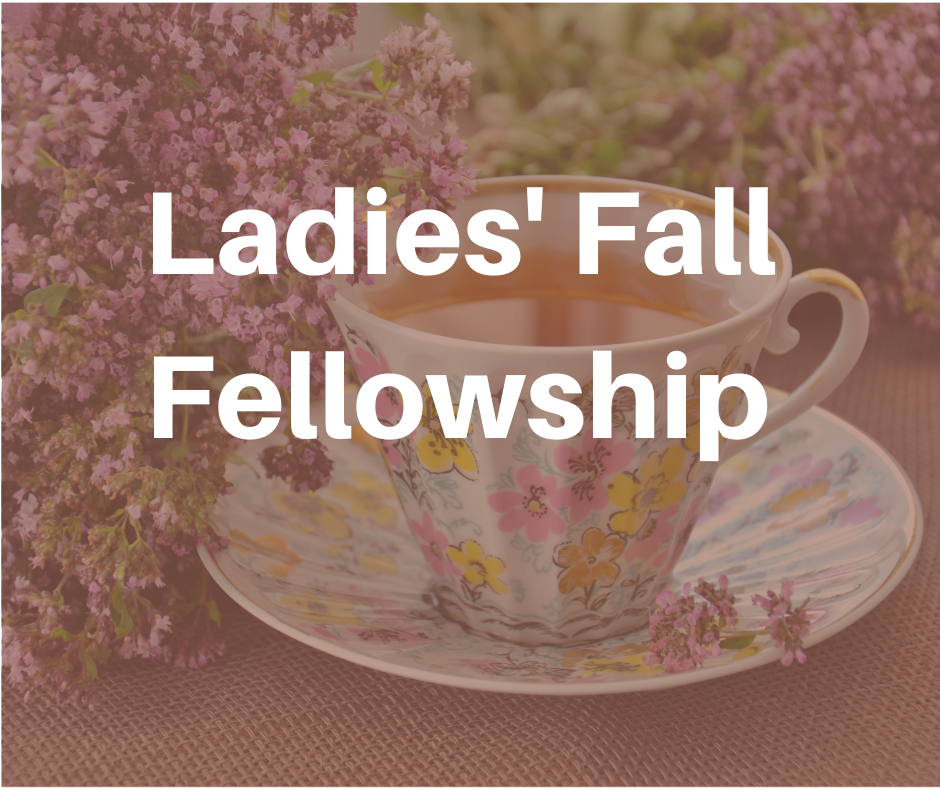Ladies Fall Fellowship image
