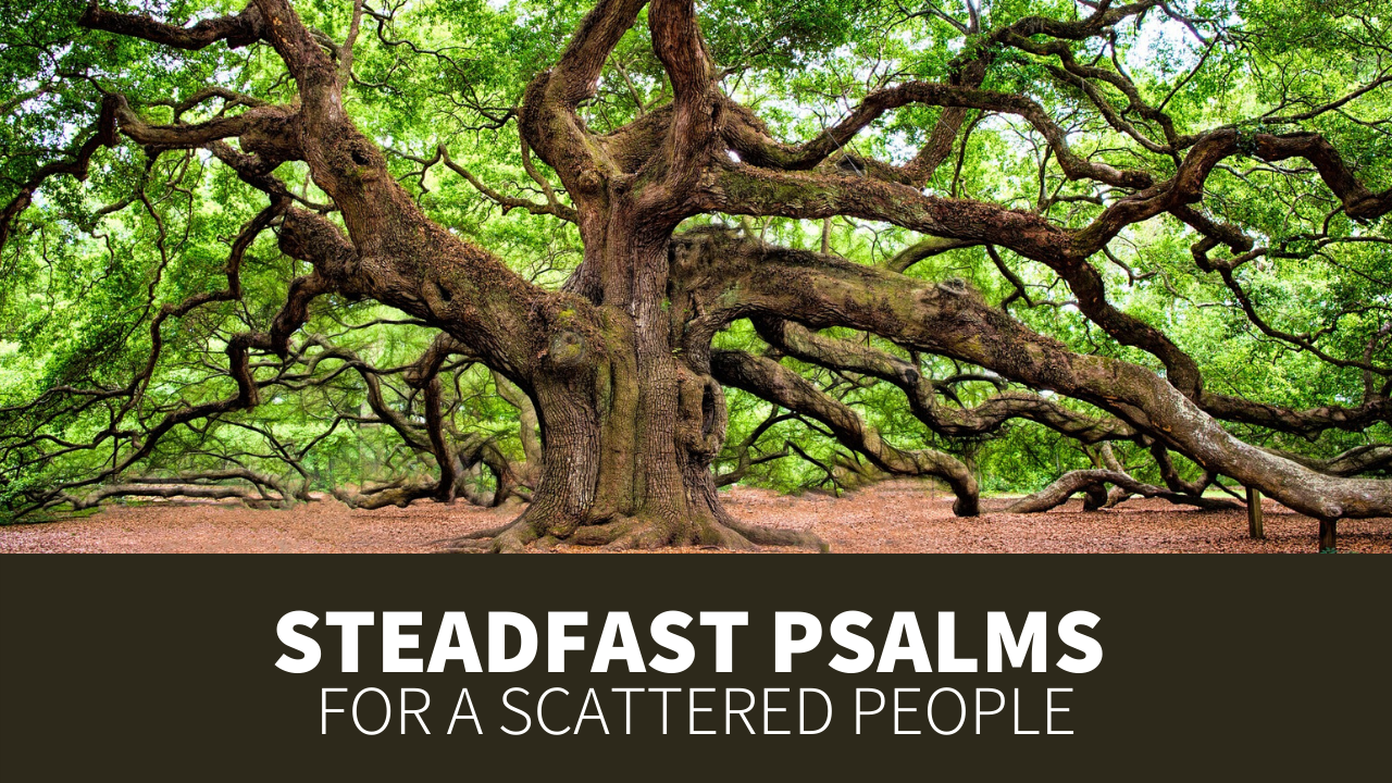 Steadfast Psalms