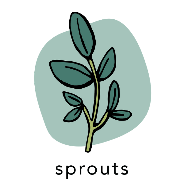 sprouts 4
