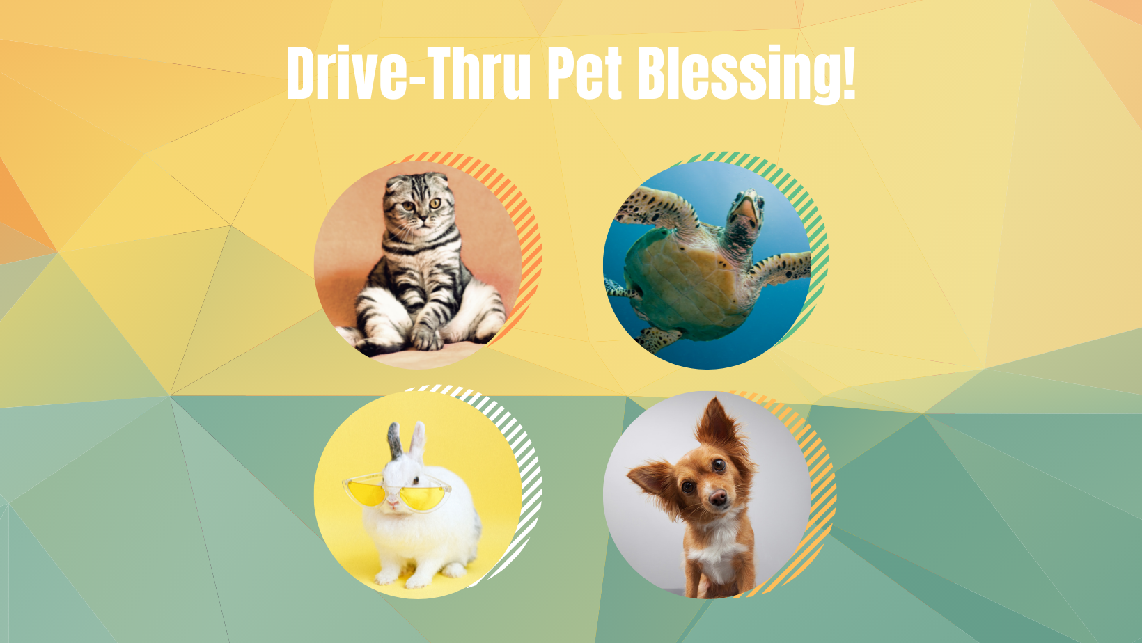 Copy of Drive Thru Pet Blessing image