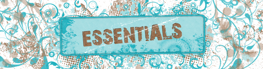 Essentials Lessons banner