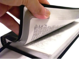 Hand with Bible image