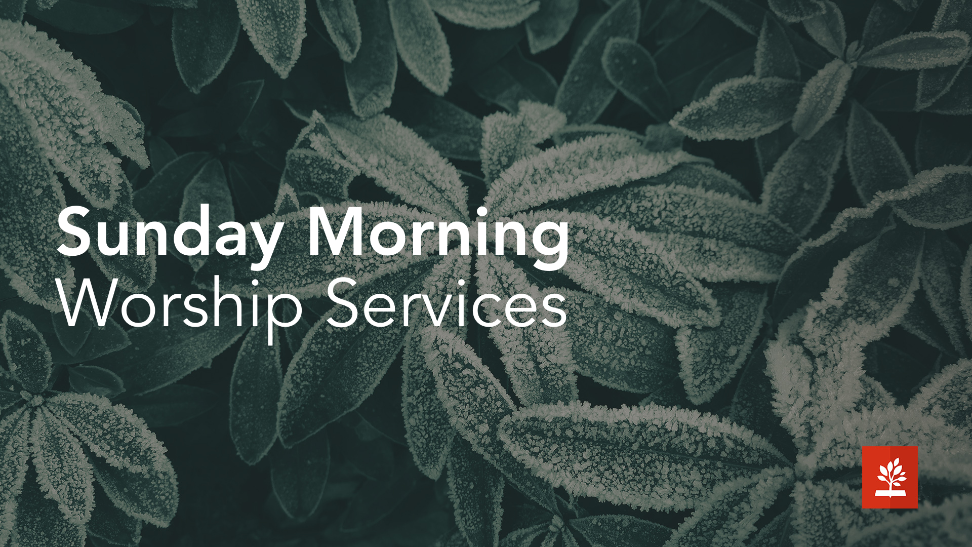 Sunday Morning Worship Services_Winter