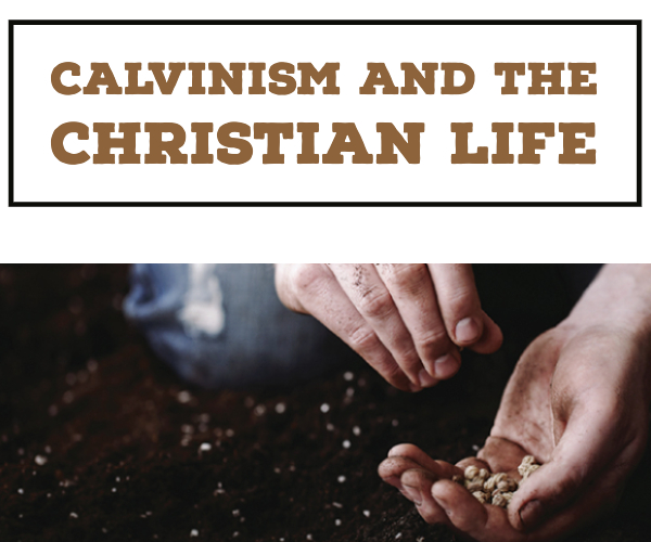 Calvinism and the Christian Life banner image