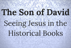 Son of David (small)