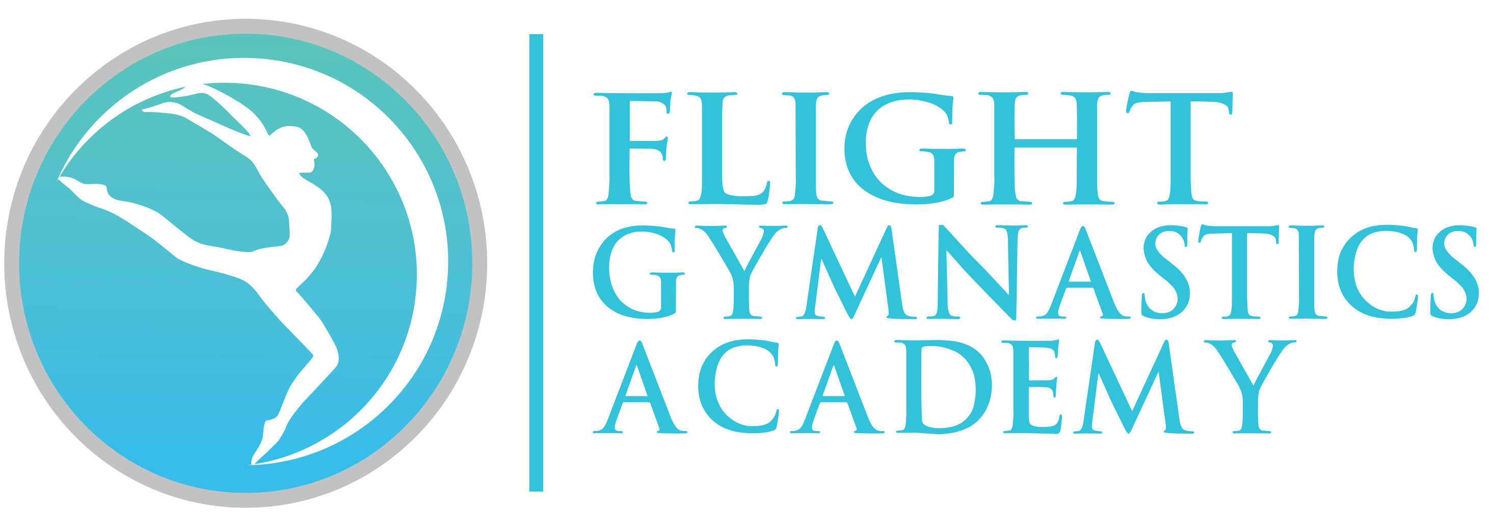 Flight Gymnastics Logo Solid[10429]