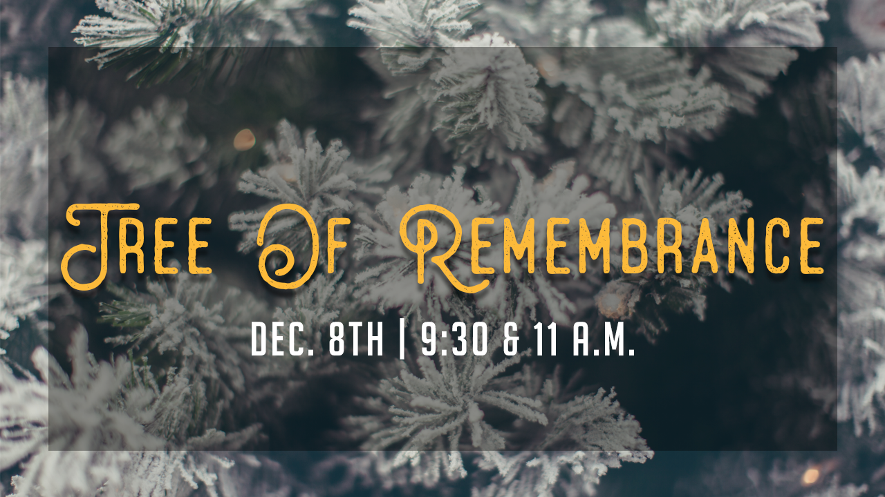 tree of remembrance image