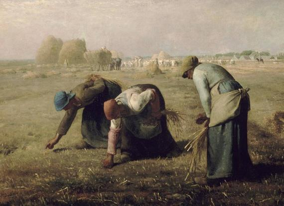 Ruth - gleaners in the field