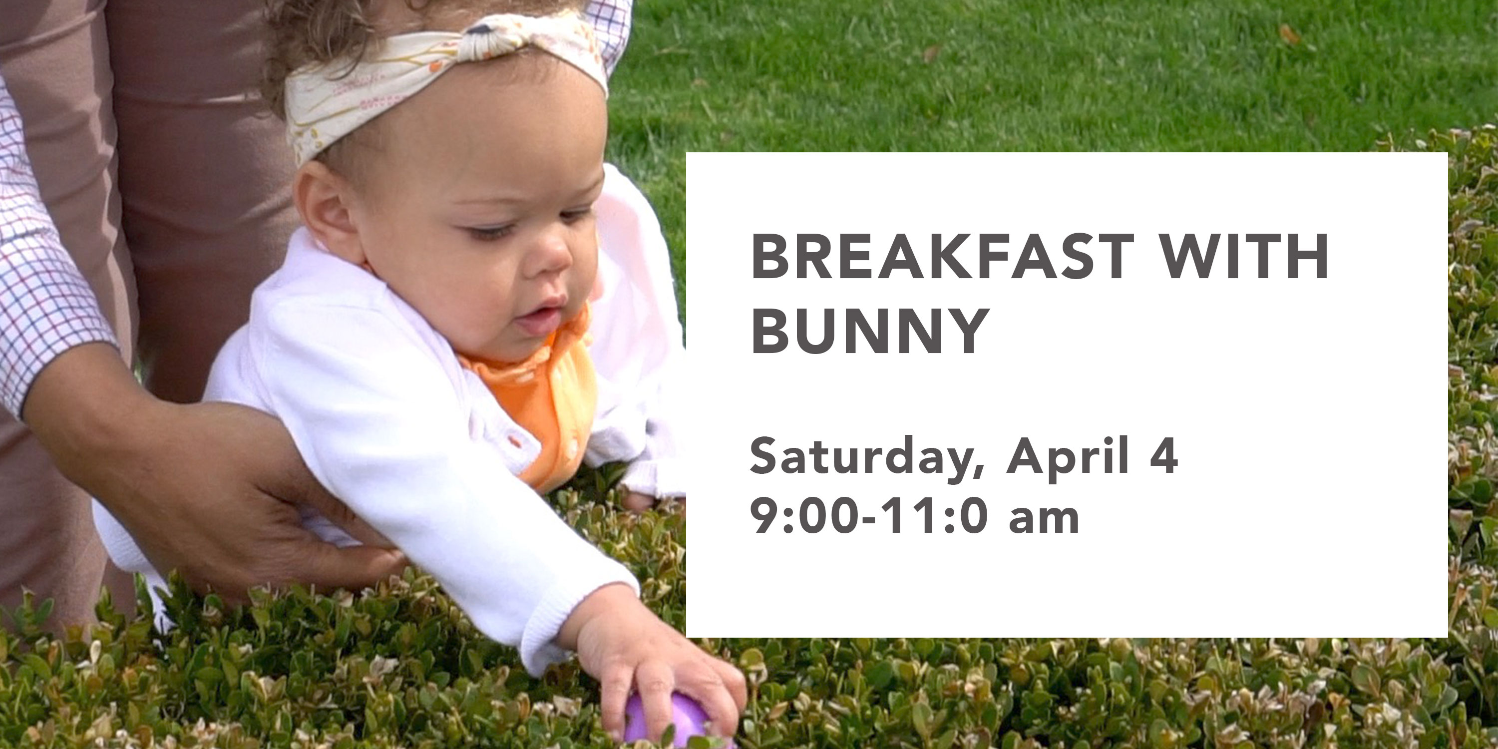 Breakfast-with-Bunny-Graphic