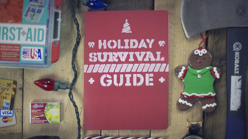 Graphic for Holiday Survival Guide-1
