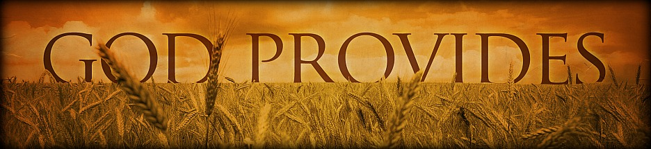 A Story of God's Provision:  It Only Takes One banner