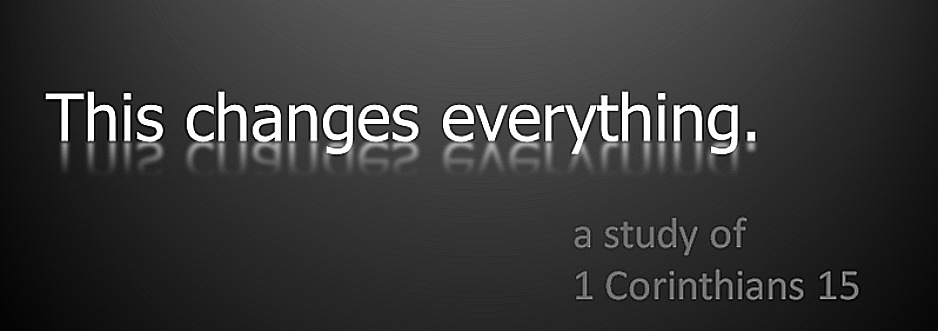 This Changes Everything 2010 banner