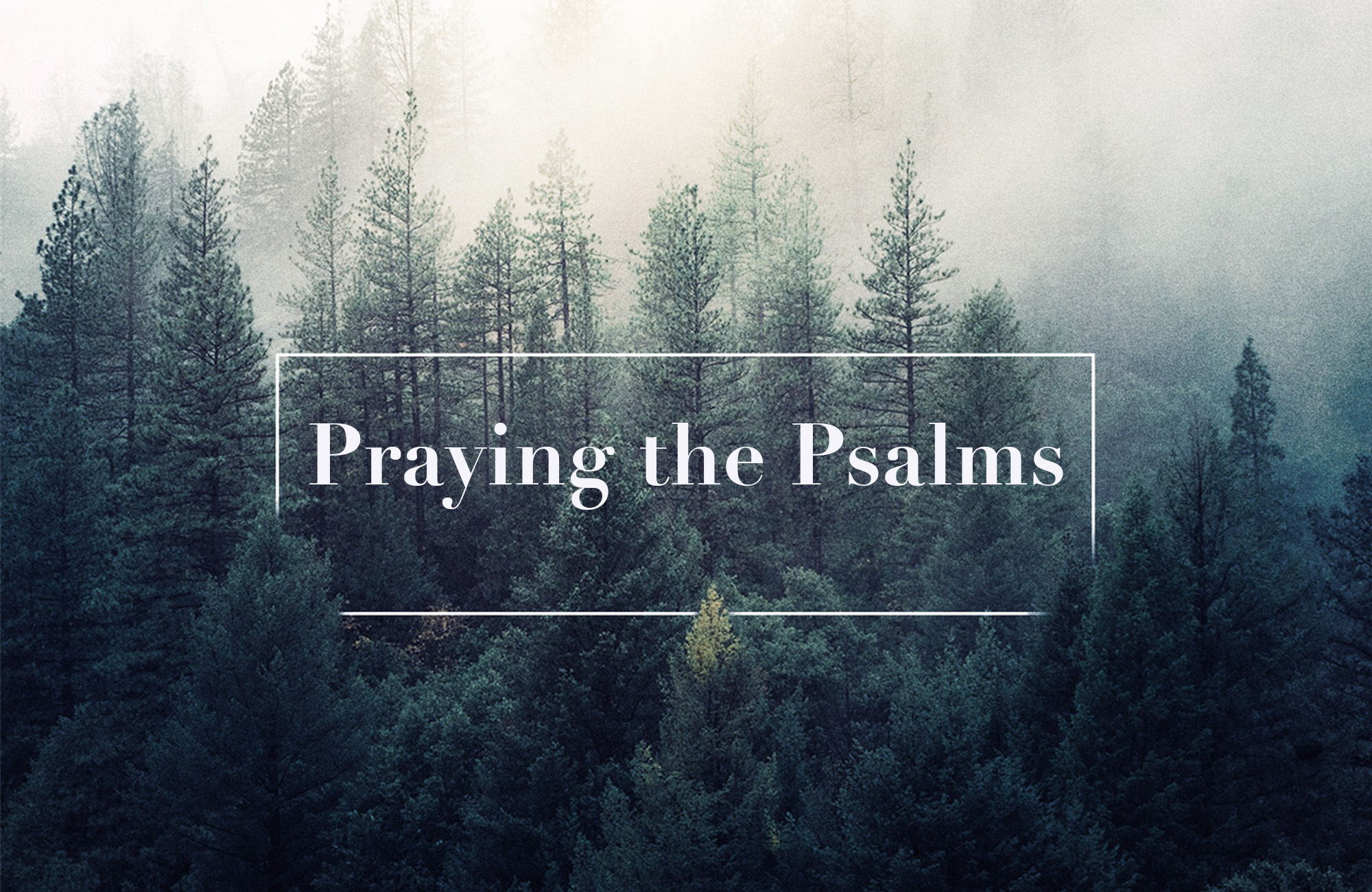 praying the psalms 1