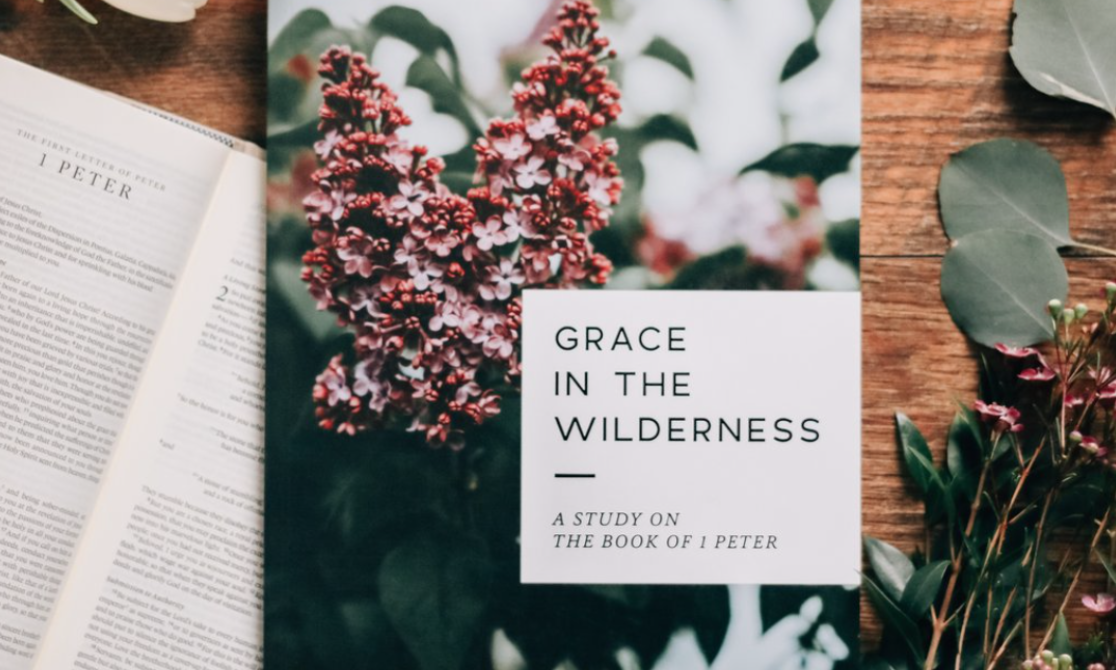 Grace in the wilderness-SP new image