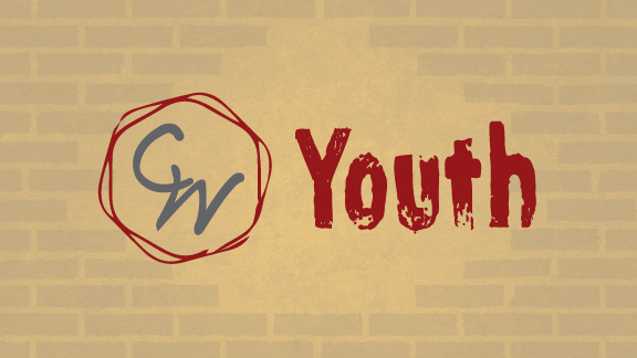 Youth-tan brick-web image
