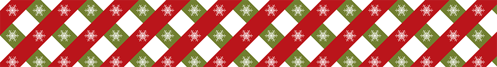 classy Christmas colors divider