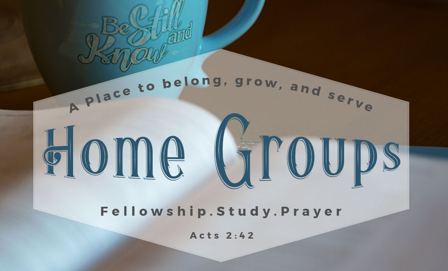 home groups bible