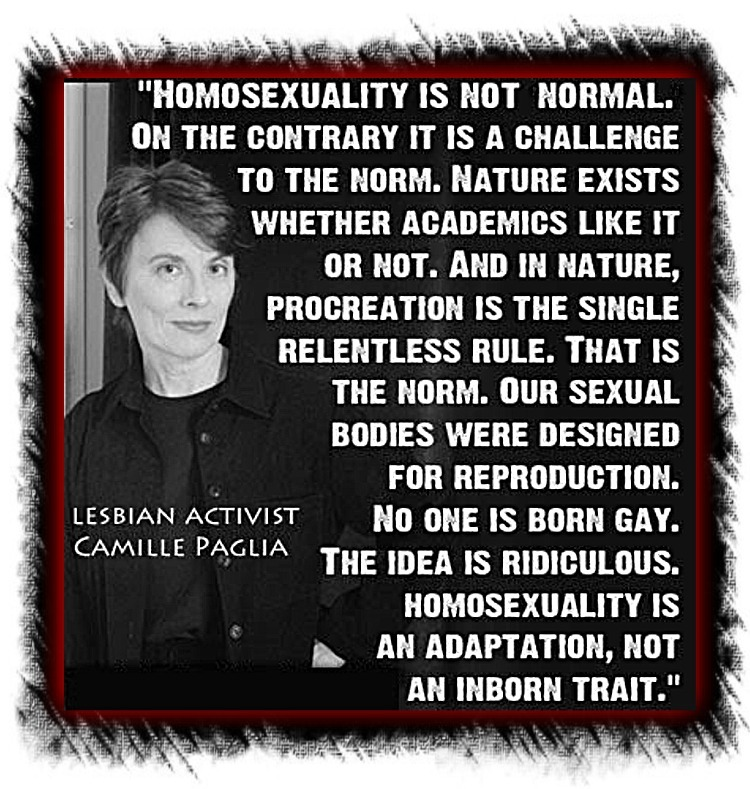 Homosexuality-is-Not-Normal-no-one-is-born-gay-Camille-Paglia-quote1