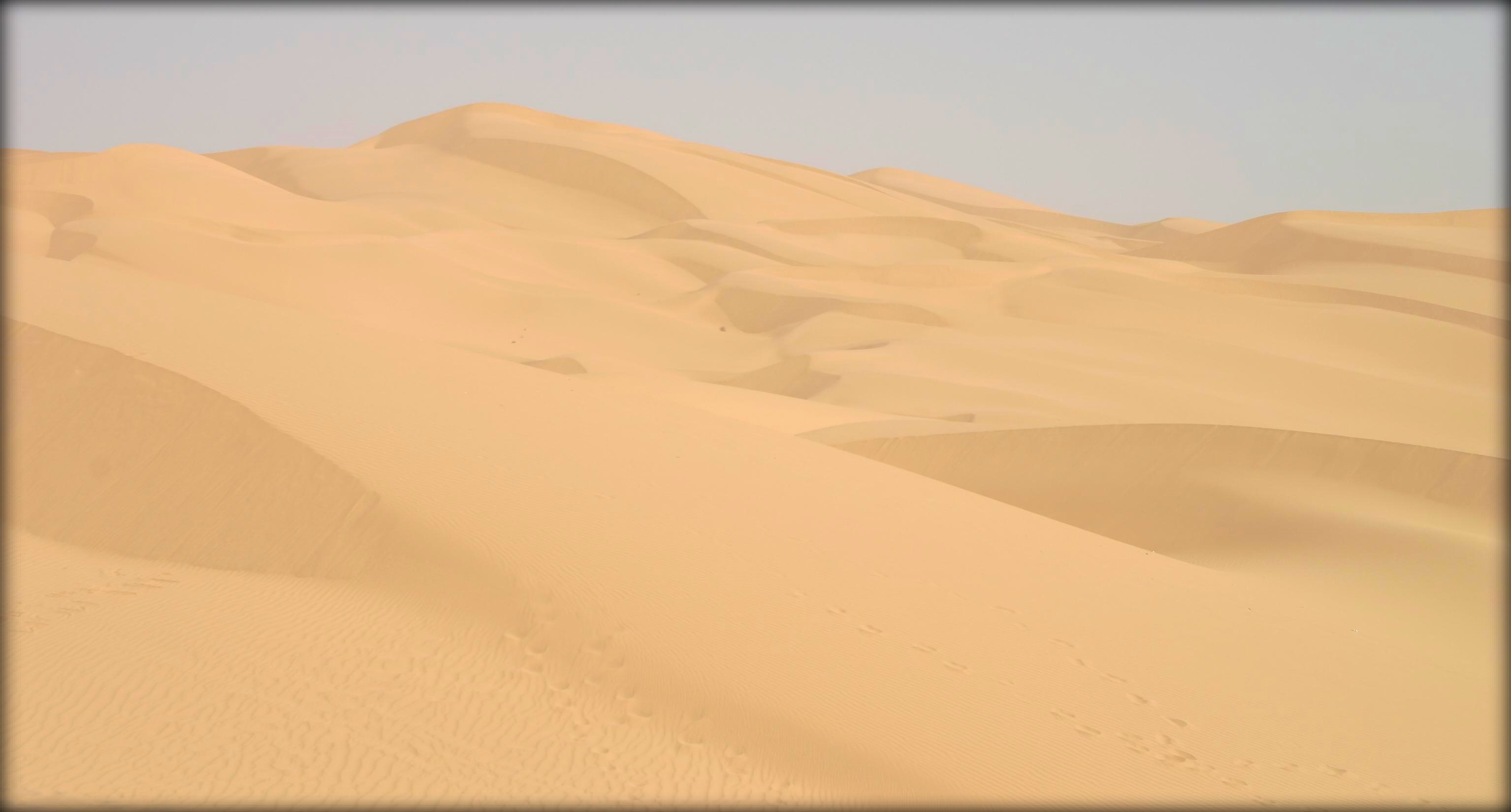 Imperial_Sand_dunes