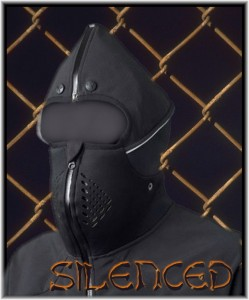 silenced_by_gay_bullies-249x300
